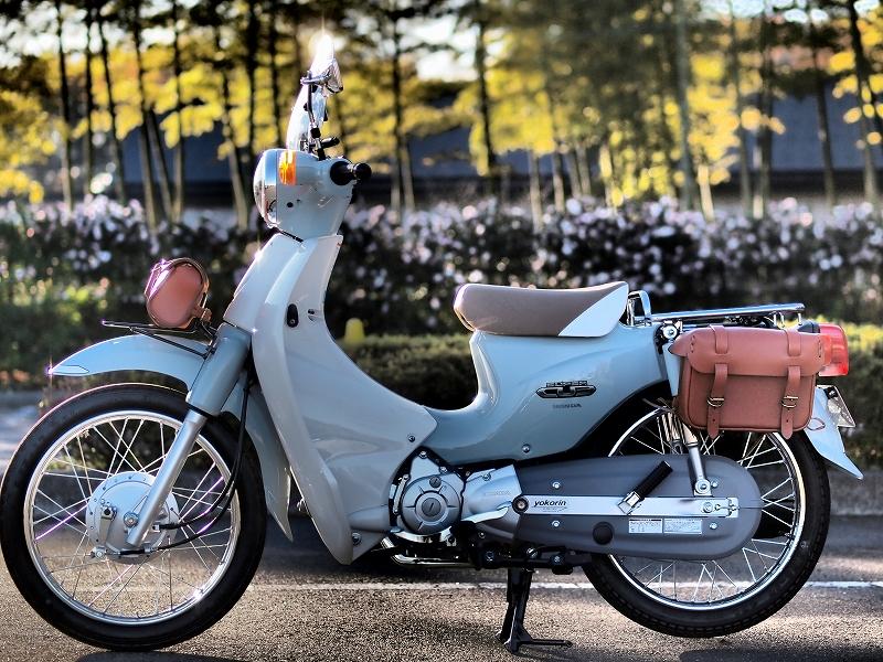 Honda Super Cub 110 Â�スタム